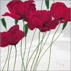 Wall sticker Poppies swayed by the wind