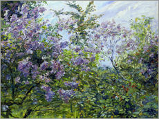 Gallery print  Blossoming lilac. About 1921 - Max Slevogt