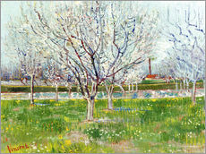 Wall sticker  Blossoming orchard - Vincent van Gogh