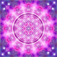 Gallery print  Flower of Life - Love Essence - Dolphins DreamDesign