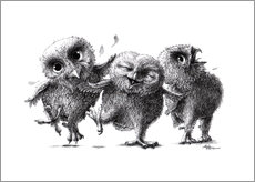 Gallery print  Three crazy owls - Stefan Kahlhammer