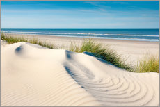 Gallery print  Langeoog seascape with dunes and fine beach grass - Reiner Würz