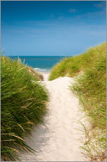 Gallery print  Path to the beach - Reiner Würz