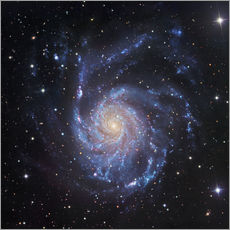Gallery print  M101, The Pinwheel Galaxy in Ursa Major - Robert Gendler
