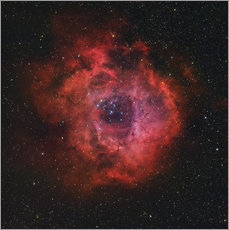 Gallery print  The Rosette Nebula - Rolf Geissinger