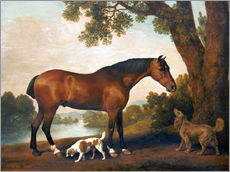 George Stubbs - Horse and two dogs