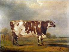 Gallery print  Wildair, an 8-year-old cow in a river landscape, 1827 - Thomas Weaver