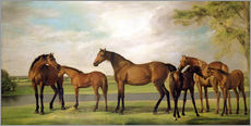 Wall sticker  Mares, foals and an approaching storm - George Stubbs
