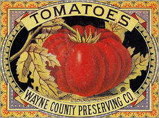 Wall sticker  Tomatoes