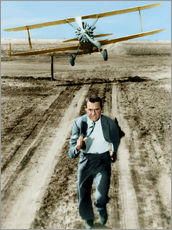 Gallery print  Cary Grant in North by Northwest