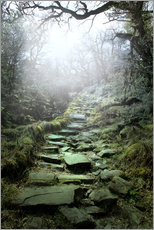 Gallery print  mystical stairs - Nadine Conrad