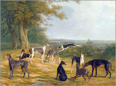 Gallery print  Nine Greyhounds on a landscape - Jacques Laurent Agasse