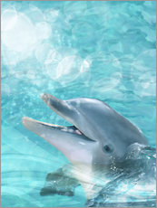 Gallery print  Dolphin - Humor - Dolphins DreamDesign