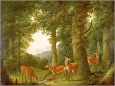 Gallery print  Forest Landscape with Deer, 1760/70 - Johann Andreas Herrlein