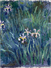 Canvas print  Iris - Claude Monet