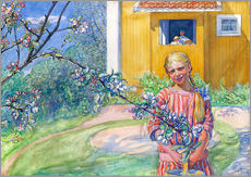 Gallery print  Girl with apple tree branch - Carl Larsson