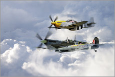 Wall sticker  Flying Brothers - airpowerart