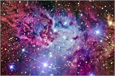Wall sticker  The Fox Fur Nebula - R Jay GaBany