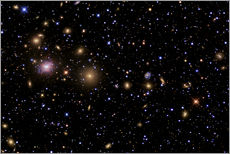 Wall sticker The Perseus Galaxy Cluster