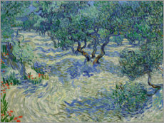 Wall sticker  Olive Orchard - Vincent van Gogh