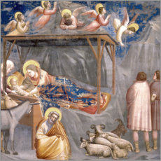 Foam board print  The Nativity - Giotto di Bondone