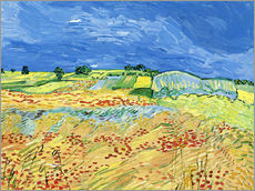 Wall sticker  Fields with Blooming Poppies - Vincent van Gogh