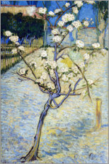 Gallery print  Blossoming pear tree - Vincent van Gogh