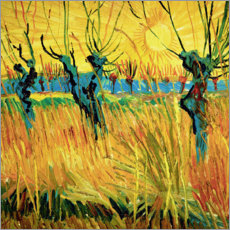 Aluminium print  Willows at sunset - Vincent van Gogh