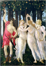 Gallery print  Detail of the Three Graces and Mercury, from the Primavera - Sandro Botticelli