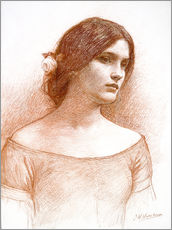 Wall sticker  Study for The Lady Clare - John William Waterhouse