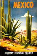 Gallery print  Mexico cactus - Travel Collection