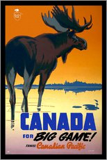 Wall sticker  Canada - big game - Travel Collection