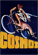 Gallery print  Cosmos bicycles