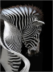 Wall sticker  african stripes II - Joachim G. Pinkawa