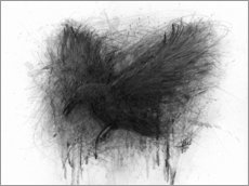 Gallery print  The Raven - Christian Klute