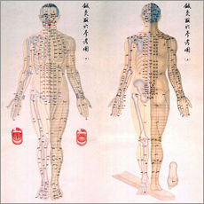 Gallery print  Acupuncture map of the male body