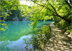 Gallery print  plitvice lakes - GUGIGEI