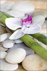 Wall sticker  Bamboo and orchid II - Andrea Haase Foto