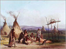 Gallery print  Camp of Native Americans - Karl Bodmer