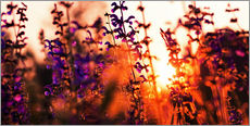Wall sticker  Lavender Sunset - Alexander Voss