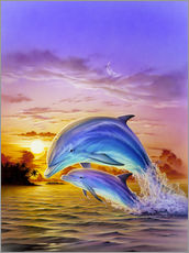 Gallery print  Sunset dolphins - Robin Koni