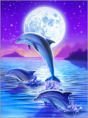 Wall sticker  Dolphins at midnight - Robin Koni