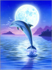 Wall Stickers  Day of the dolphin - midnight - Robin Koni