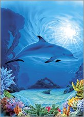 Gallery print  Camouflage dolphins - Robin Koni