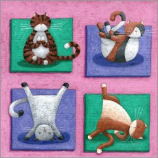 Wall sticker  Yoga for Cats - Peter Adderley