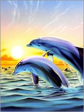 Wall sticker  Dolphin duo - Robin Koni