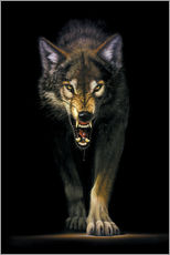 Gallery print  Stalking wolf - Chris Hiett