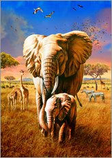 Wall sticker  Elephants - Adrian Chesterman