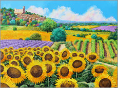 Wall Stickers  Vineyards and sunflowers in Provence - Jean-Marc Janiaczyk