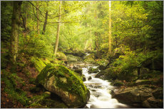 Gallery print  Green Valley - Oliver Henze